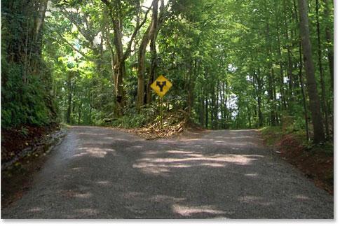 the road not taken book pdf